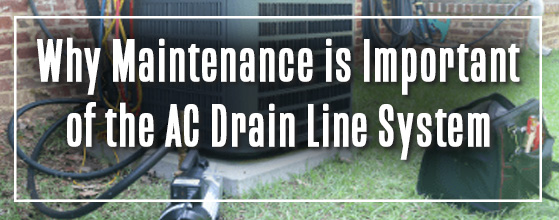 graphic: why maintenance is important of the ac drain line system