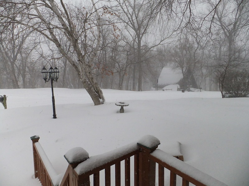 Photo of snow in backyard of Missouri home
